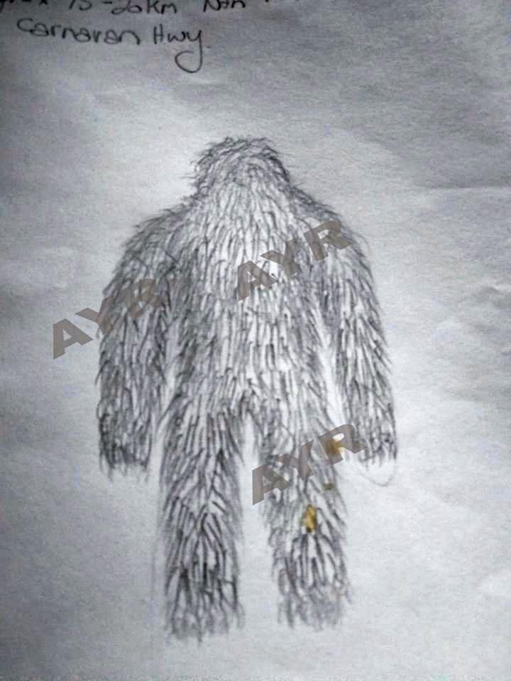 The witness's sketch of the mysterious creature had Facebook divided.