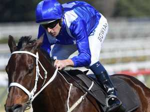 Winx steals show with surprise raceday cameo