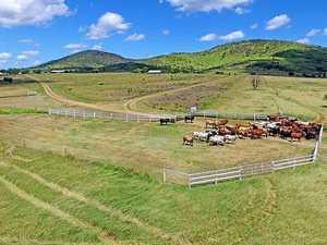 Decade high prices in CQ rural property despite drought