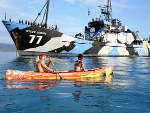 Indigenous elder paddles to welcome Sea Shepherd flagship