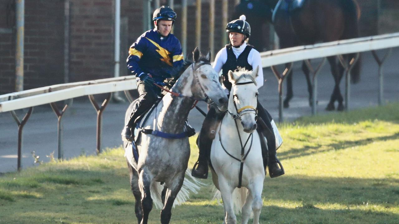 Tommy Berry was unable to get Chautauqua to jump out in a trial at Rosehill on Wednesday. Picture: Getty