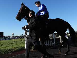Winx warms up for impending return in style