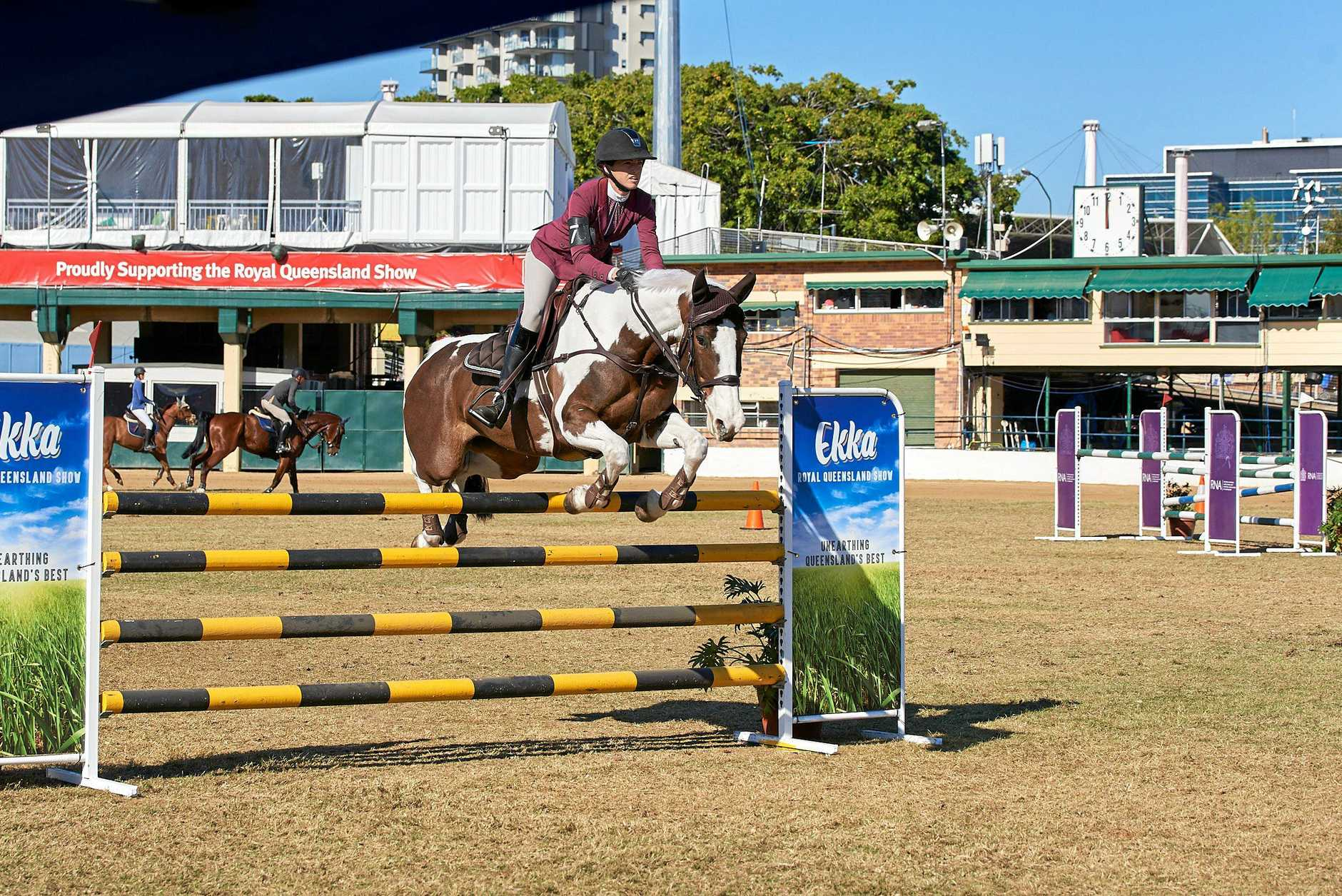 The equestrian activities always draw a big crowd.