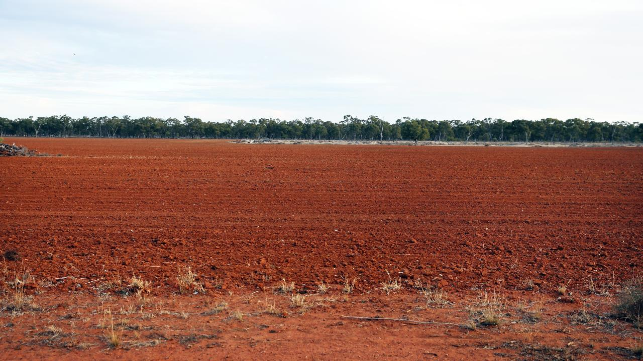 The sight of wide expanses of dry earth greets farmers every day around the state. Picture: Sam Ruttyn