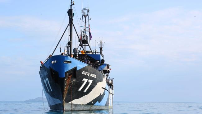 The Sea Shepherd flagship the Steve Irwin at anchor in Pioneer Bay.