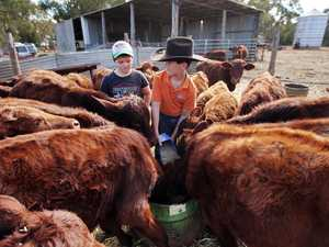 Whole state gripped by 'one of worst droughts'