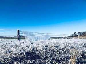 Amazing frost photos captured as Toowoomba shivers