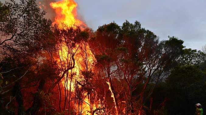 Generic bushfire.
