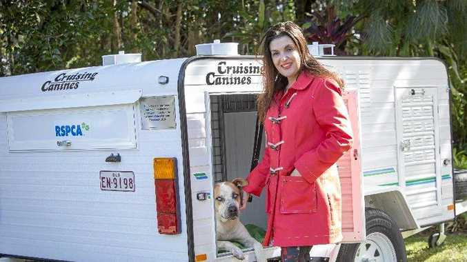 ALL FOR ANIMALS: Helena Wylie and the donated dog carrier.