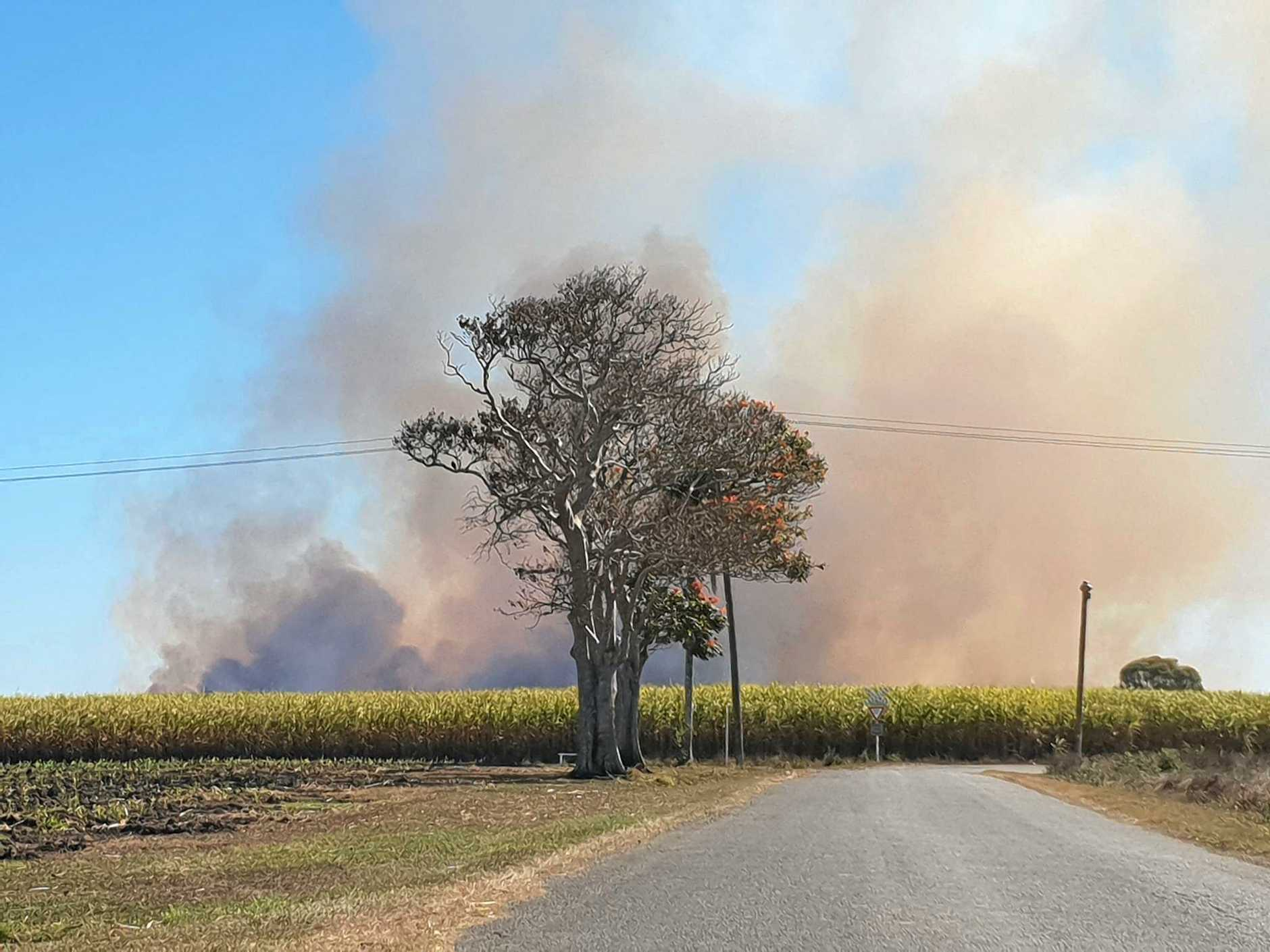 CONTROLLED BURN: Fire fighters conducted a hazard reduction burn on Bundaberg Sugar land this afternoon with the amount of smoke causing concern for some locals.