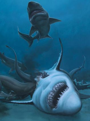 An artist's impression of a  prehistoric shark feast.