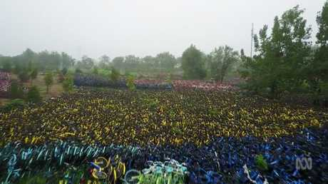 Drone footage reveals the sheer number of bikes. Picture: ABC