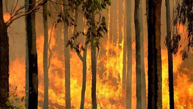 The fire at Adelaide River was ignited on Dorat Rd. PIC: GENERIC