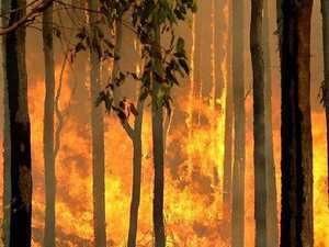 BUSHFIRE: Crews downgrade blaze on Southern Downs