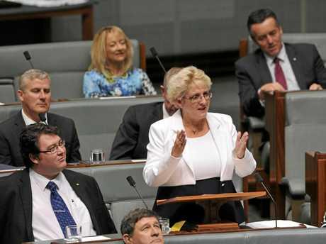 NERVOUS MOMENT: Michelle delivering her Maiden Speech in Parliament December 2013.