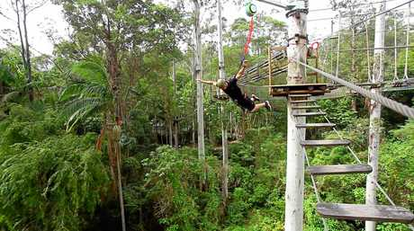 The TreeTop Challenge already runs high ropes and zipline courses in Brisbane and on the Gold Coast, and is expected to open at the Big Pineapple this summer.