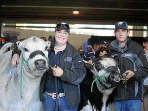 Lismore cattle breeder spots success at the Ekka