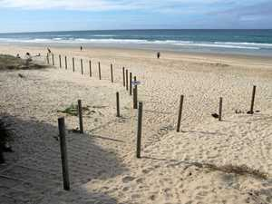 Beach fence replaced after first one 'mysteriously' removed