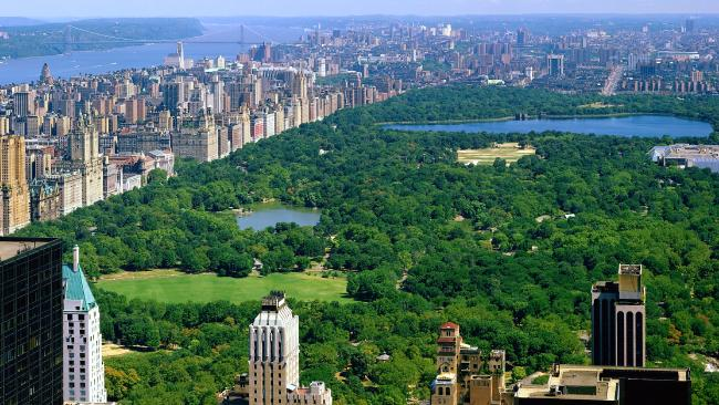 A 23-year-old Australian woman travelling in New York was killed while riding a bike beside Central Park.