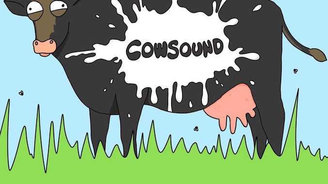 Music festival announced for Toowoomba.