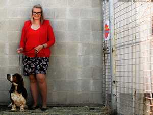 Bundy woman new to dog breeding game, wins Ekka prizes