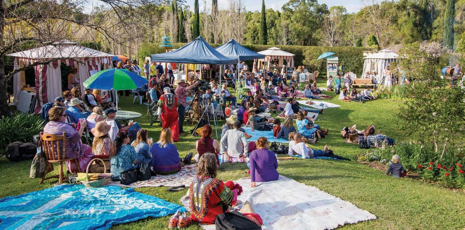GARDEN OF LIGHT: Starting with live music at Flutterbucks on Friday, the O'Heart Festival will offer an eclectic range of activities throughout Tylagum village .