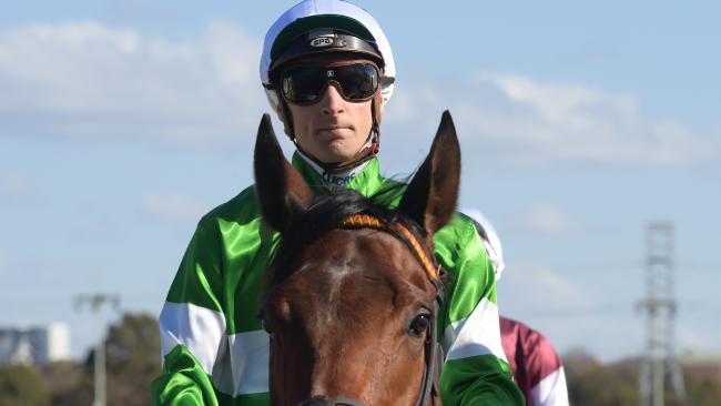 Blake Shinn has been taken to hospital after a fall at the Randwick trials. Picture: AAP