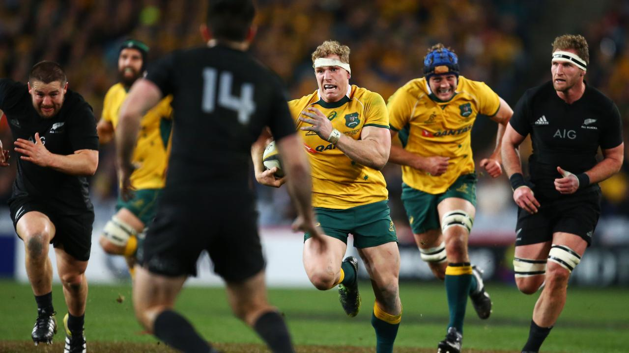 The All Blacks say they are on high alert for David Pocock's influence around the breakdown ahead of Bledisloe I.