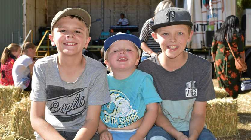 ALL SMILES: Cooper, Ryley and Jayden Sykes of Ipswich at the Up the Creek Festival on Saturday.
