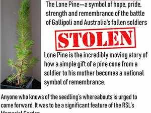 Anzac memorabilia stolen from RSL