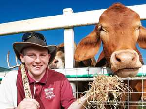 School helps bale out farmers by selling steer