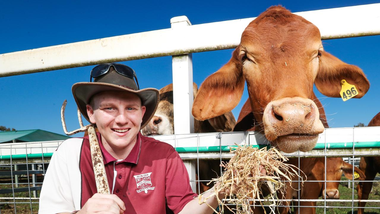 Beenleigh State High is using its own produce to help raise money for struggling farmers. Picture: Nigel Hallett