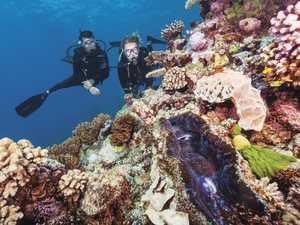 Reef foundation treats elite to luxury island stay