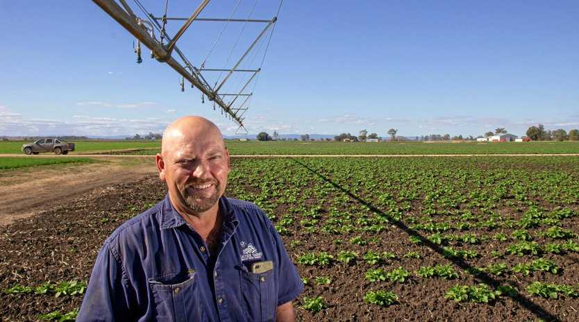 WATER-FUL NEWS: Hauser Farms owner and manager Kerry Hauser stands with an irrigation boom in one of his potato fields near Glenore Grove.