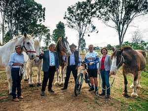 Australia's longest rail trail opened in 'our backyard'
