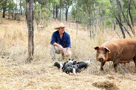 Kilkivan property Piggy in the Middle owner Dean Mayne.