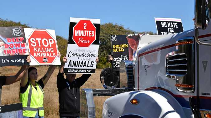 Protesters stop a truck outside Swickers meat processing factory in Kingaroy.