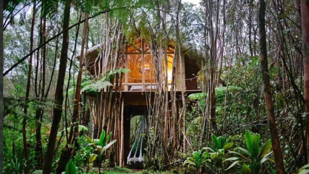 This affordable Bali rental has made the list of Airbnb's most wish-listed properties. Picture: Airbnb