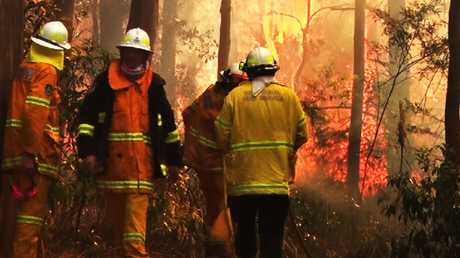 Rural Fire Service operators battle flames at Bilpin. Picture: TNV