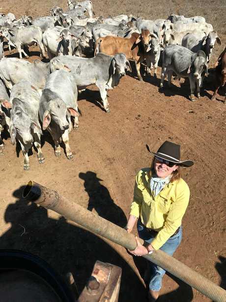 Caitlin McCamley feeding the cattle lick.