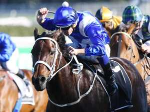 Winx's winning ways costs bookies $100m