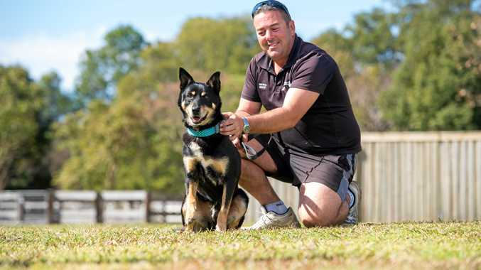 Farm dog Jimmy's owners have had to sell everything, now he is in need of a new home. Pictured with Tarraray Pet Resort's Scott Vidler.