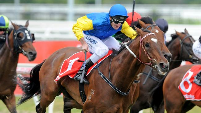 Black Heart Bart has a fitness edge on his stablemates in the P.B. Lawrence Stakes. Picture: AAP