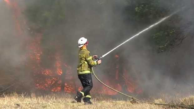 A member of the Rural Fire Service battles a fire at Bomaderry, NSW, this week. Picture: TNV