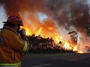 Salt Ash bushfire: Dramatic photos capture devastation