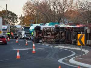 Cattle truck rollover chaos