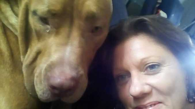 Roaming laws put woman's pet dog on death row