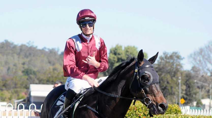 TOP EFFORT: Winning jockey Luke Dittman guides Sylvester back to the Ipswich enclosure on Saturday.