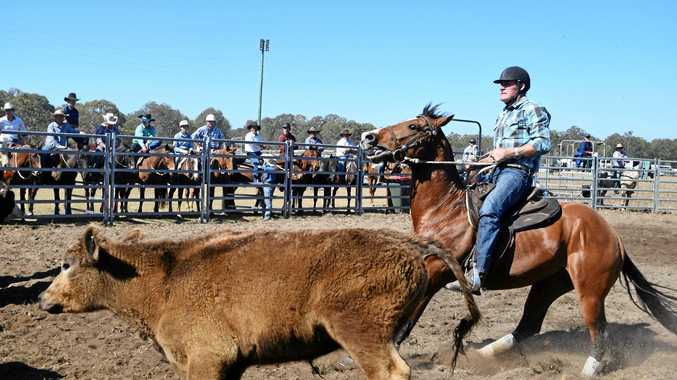 PHOTOS: Competition kicks up dust at Casino's campdraft