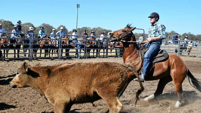 Casino Campdraft was enjoyed by many at Casino Showgrounds over the weekend.